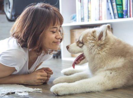 Scopri Il cane adatto alle tue esigenze